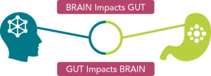 micronourish-brain-gut-impact